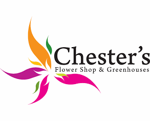 Chester's Flower Shop and Greenhouses, Utica, NY