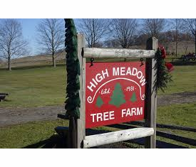 High Meadow Tree Farm, Harpursville, NY