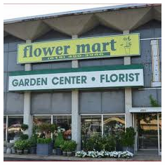 Flower Mart, Nashville, TN