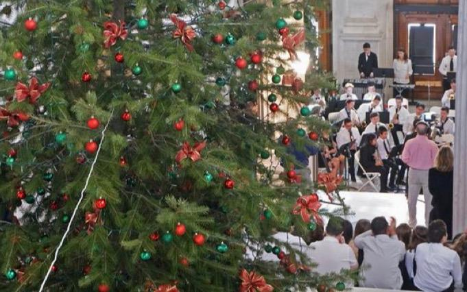 """""""Buckle up, Rhode Island: It's time to light the State House Christmas tree""""....Providence Journal"""