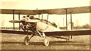 Gloster Goral