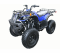Coolster 3125D 125cc Atv  from Motobuys.com