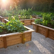 4X4 Raised Bed Garden (Wood)