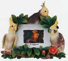 "Picture Frame 4x6"" Cockatiel"