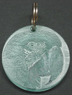 Fun-Max Zoo-Max Ingraved Acrylic Key Ring Green-winged Macaw