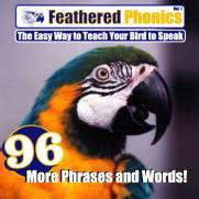 Feathered Phonics CD Volume 4 96 More Phrases and Words