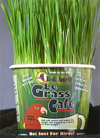 Beak Appetit Le Grass Cafe