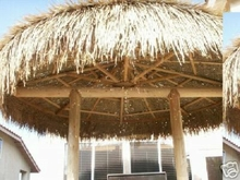 14ft Palapa Umbrella Thatch Top Cover