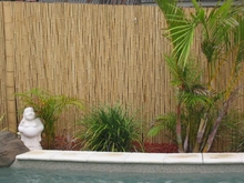 "Bamboo Fence Natural <p>3/4"" x 3' x 8'"