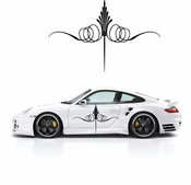 Pinstripe Pinstripes Car graphics Vinyl Decal Sticker Stickers MC153