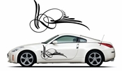 Pinstripe Pinstripes Car graphics Vinyl Decal Sticker Stickers MC350