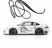 Pinstripe Pinstripes Car graphics Vinyl Decal Sticker Stickers MC536