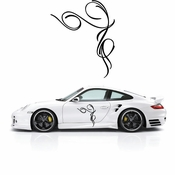 Pinstripe Pinstripes Car graphics Vinyl Decal Sticker Stickers MC601