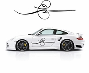 Pinstripe Pinstripes Car graphics Vinyl Decal Sticker Stickers MC655