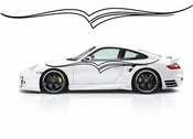 Pinstripe Pinstripes Car graphics Vinyl Decal Sticker Stickers MC992