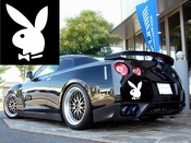 Playboy Vinyl Decal Car Performance Stickers