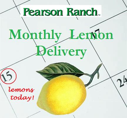 Monthly Lemon Delivery- 10lbs.
