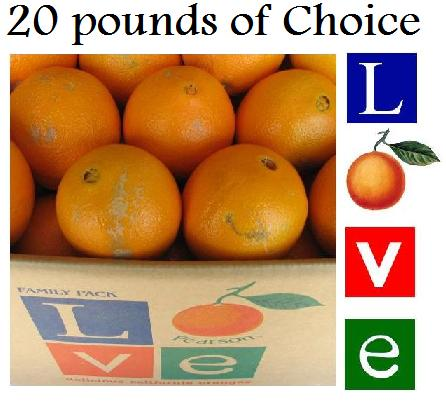 Love Choice - 20 lbs.