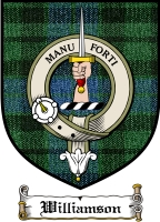Williamson Clan Macleod Clan Badge / Tartan FREE preview