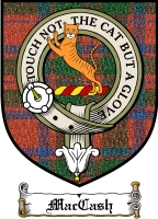 Maccash Clan Macdonald Clan Badge / Tartan FREE preview