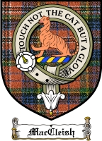 Maccleish Clan Badge / Tartan FREE preview