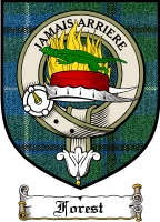 Forest Clan Badge / Tartan FREE preview