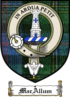 Macallum Clan Badge / Tartan FREE preview