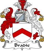 Bradie Family Crest / Bradie Coat of Arms JPG Download