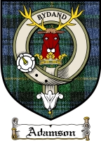 Adamson Clan Macintosh Clan Badge / Tartan FREE preview