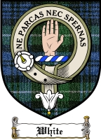 White Clan Macgregor Clan Badge / Tartan FREE preview