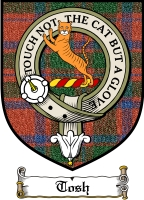 Tosh Clan Mackintosh Clan Badge / Tartan FREE preview