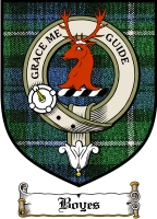 Boyes Clan Badge / Tartan FREE preview