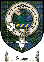 Angus Clan Badge / Tartan FREE preview