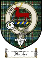 Napier Clan Badge / Tartan FREE preview