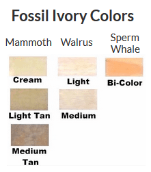Fossil Ivory Color Chart