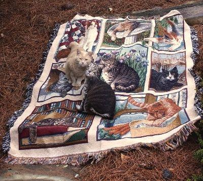 Kitty Corner Tapesty Throw, 51in x 68in