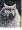 CatmanDrew™ Drew Strouble Persian Cat Art