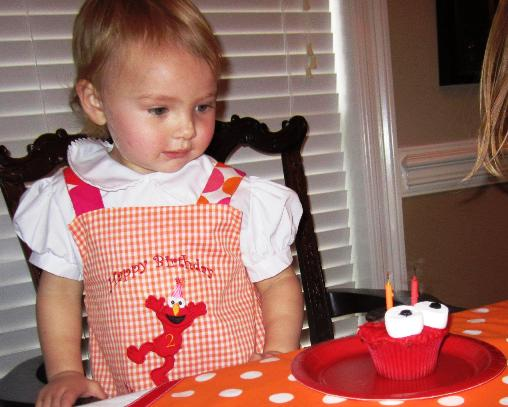 Mary Stanton Elmo Birthday Party