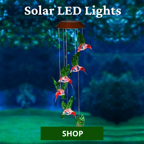 Shop All Solar LED Lights