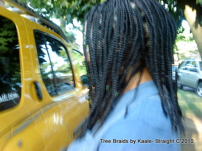 Box braid for Caucasian, Left6.