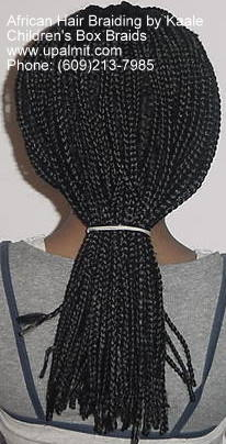 Box braids- back.