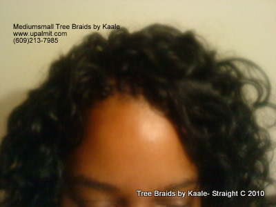 Curly Tree Braids- Mediumsmall, Top 2.