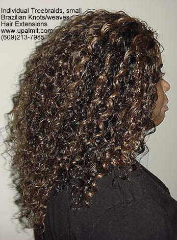 Wavy and curly Individual Treebraids, R113.