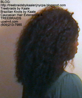 Tree Braids- Brazilian Curly human hair Right2231.