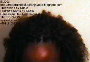 Tree Braids- Brazilian Curly human hair Top2232.