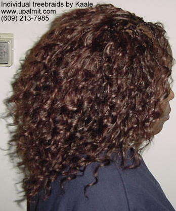 Individual treebraids with wavy hair, right view.