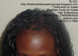 Individual Treebraids with KAALE brand Wet n Wavy human hair Top2163.