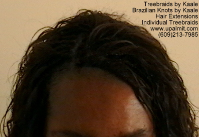 Wavy and curly Individual Treebraids, Top114.4.