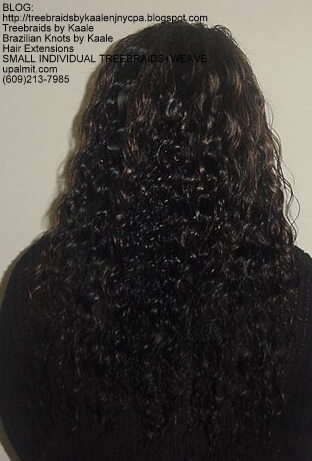 MicroSmall Individual Treebraids with hair extensions in back Back2144.