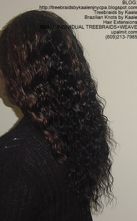 MicroSmall Individual Treebraids with hair extensions in back Left2145.